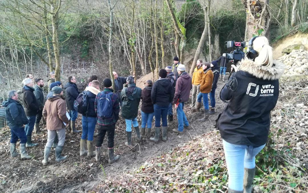 Formation agroforesterie et trognes 14 et 15 janvier 2020 en Champagne