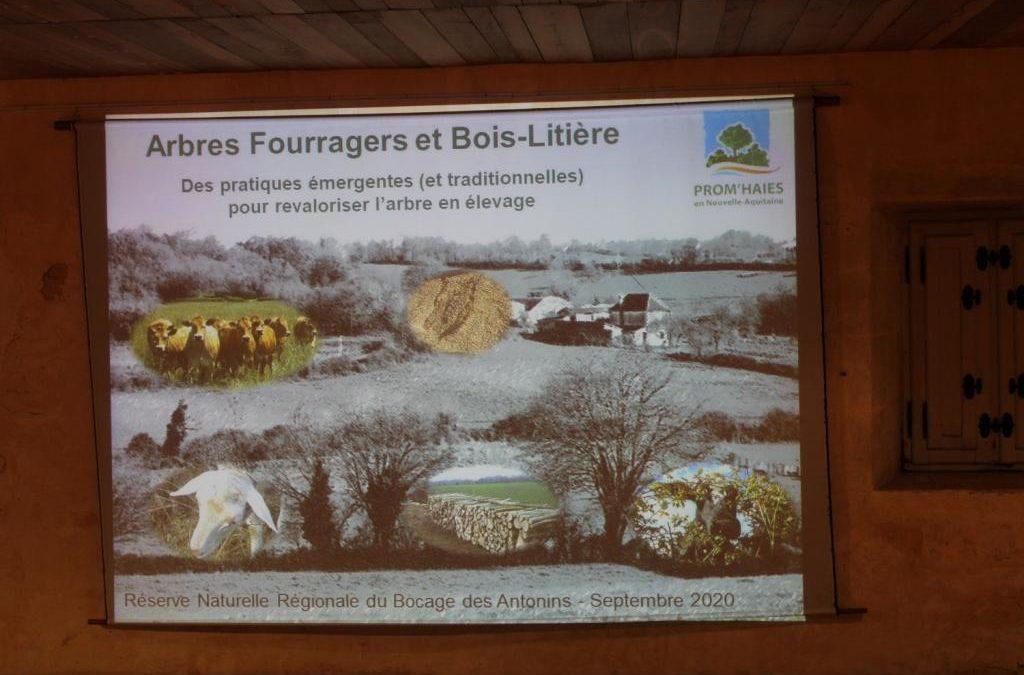 Conférence « Les arbres fourragers » – Deux Sèvres Nature Environnement – 25 septembre 2020